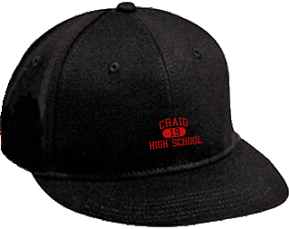 Cougars Embroidered Flat Bill Caps