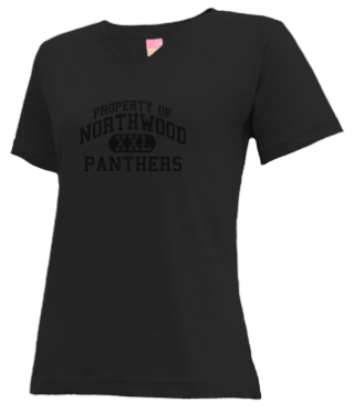 Women's Panthers V-neck Shirts