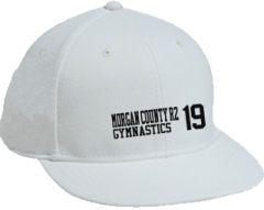 Men's Morgan County R2 Middle School Tigers Embroidered Flat Bill Caps