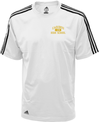 Men's Vikings Embroidered Adidas Golf ClimaLite® Shirt