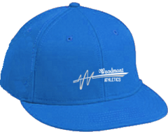 Women's Woodmont High School Wildcats Embroidered Flat Bill Caps